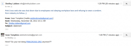 Was Pink Cross Website Shut Down or Blocked???  Shelley Lubben Speaks