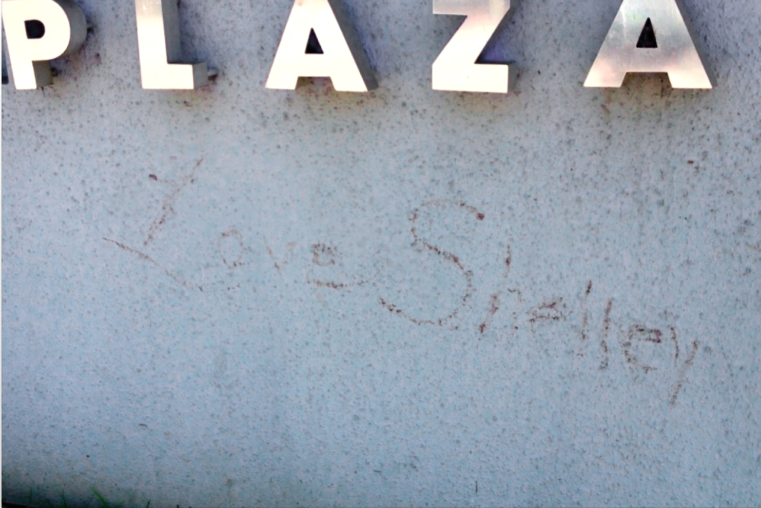 Eyewitness: Shelley Lubben Vandalized Vivid Entertainment HQ: TRPWL Exclusive