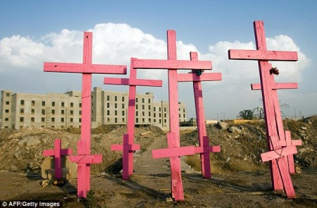 Pink crosses mark the place where eight women were found murdered in Ciudad Juarez: The city has a terrible reputation for violence and sexual assault.