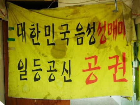 """""""The biggest contributor to pushing sex work underground are the authorities."""" A banner – previously used at the press conference by the Hanteo National Union of Sex Workers – hangs forlorn between two brothels in Yeongdeungpo, Seoul, as the red light district is closed on Korean Sex Workers' Day 2012. (Photo by Matthias Lehmann)"""