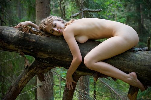 голая девушка лезет на дерево фото