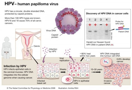 69 Percent of Us Probably Have HPV