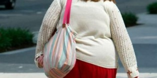 Federal study on lesbian obesity costs $3 million