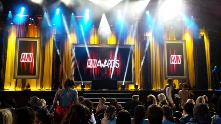 AVN Award Winners 2015 -- TRPWL.com
