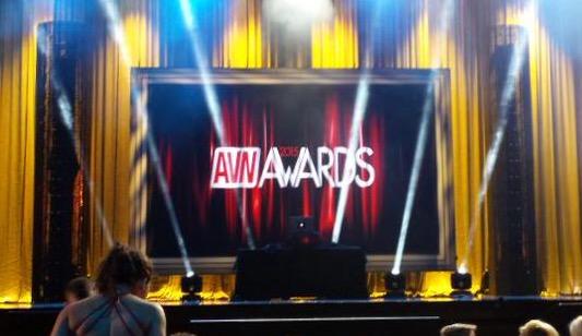 AVN Award Winners 2015