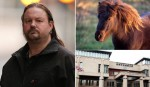 'Disgusting' man cleared of having sex with Shetland pony but jailed for outraging public decency