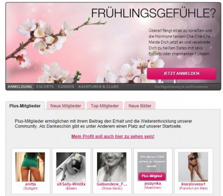 German brothel advertises for full-time prostitute 'tester'