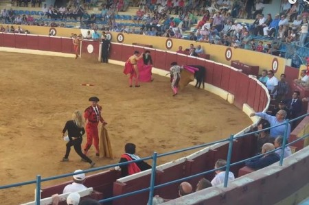 Swedish-porn-star-jumps-into-bullfighting-ring-to-comfort-wounded-animal