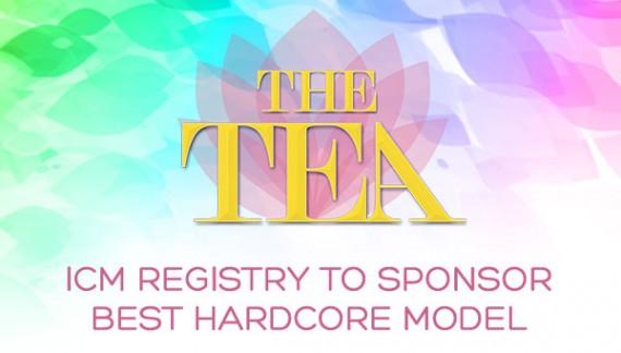 "ICM Registry to Sponsor ""Best Hardcore Model"" at 2016 Transgender Erotica Awards"
