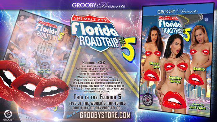 Grooby's Florida Roadtrip #5 Hits Shelves Today