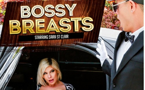 Sara St. Clair Lands The Cover of Reality Kings' 'Bossy Breasts'