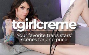 Trans Content