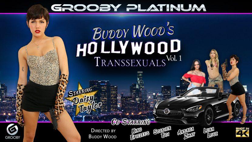 Hollywood Transsexuals